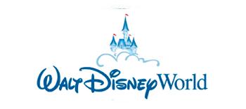 walt disney world kasteel